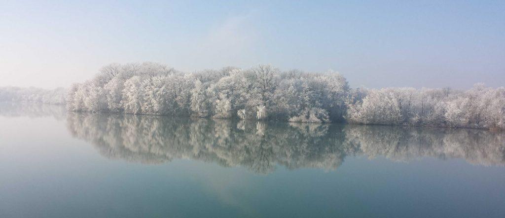 Ernte des Nebels: vereiste Planzen am Opfinger Backersee, Freiburg. Foto: M. Veeser-Dombrowski